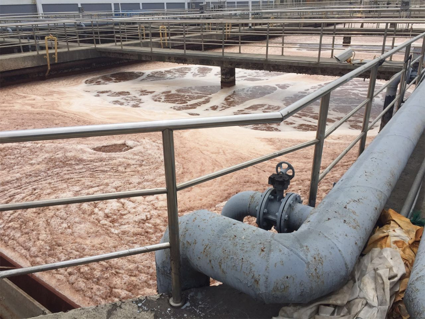 A large-scale wastewater treatment and transformation in Nantong